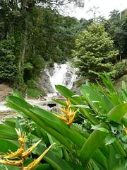 Lata Iskandar Wasserfall 1