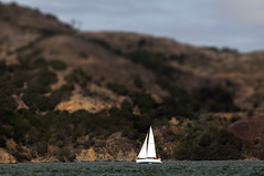 Still Waters Run Deep (noamgalai) Tags: sf sanfrancisco trees sea mountain lake landscape photography boat photo dof hill picture photograph sail allrightsreserved   photomania  noamg noamgalai   stillwatersrundeep