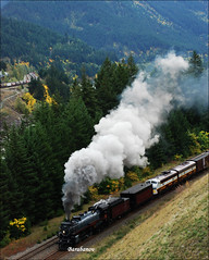 steam train (Miss Barabanov) Tags: canada fall nature vancouver train bc britishcolumbia smoke natureza tracks rail railway canadian steam empress olympics cp trem cpr outono canad steamtrain 2010 fumaa northbend 2816