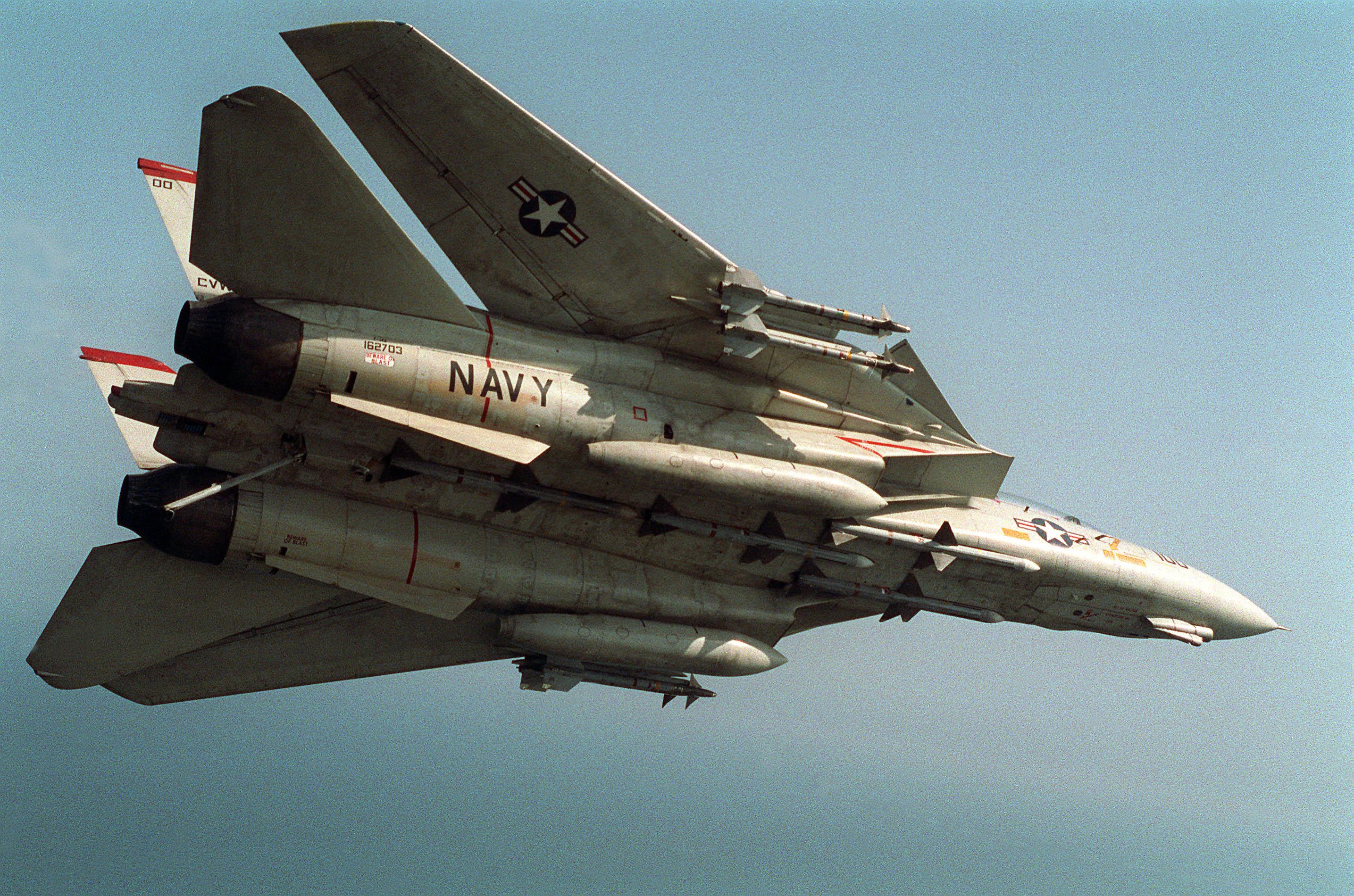 F 14 (戦闘機)の画像 p1_39