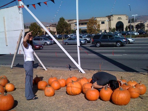 Pumpkin hunting with the sis and bro