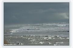 Gris souris.... (Turquoise Bleue) Tags: france turquoise horizon 17 plage mousse tempête écume océan colère iledoléron charentemaritime îledoléron turquoisebleue grandemarée legrandvillage