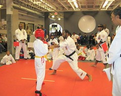 Southfield Michigan Martial Arts Institute