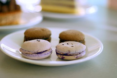 French macarons (Farl) Tags: food sweet chocolate philippines sugar biscuit pastry cebu fusion goodeats meringue ayala ube macarons vanille cebusugbo theterraces vanillecafeandpatisserie frenchfilipino cebuayalamall