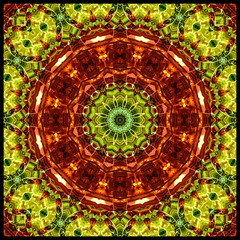 Metallic (Lyle58) Tags: orange abstract color geometric yellow circle design colorful pattern kaleidoscope mandala symmetry zen harmony reflective symmetrical balance circular kscope kaleidoscopic kaleidoscopes kaleidoscopefun kaleidoscopesonly lyle58 brandyshaul