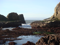 MartinsBeach_2007-041 (Martins Beach, California, United States) Photo