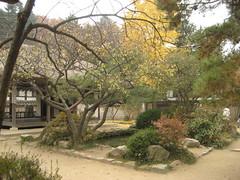 IMG_0719 (blue.tengu) Tags: korea seoul folkvillage suwon