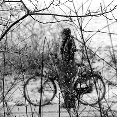 Hard to cycle (Hans van Reenen) Tags: winter bw snow mood cyclist fav50 sneeuw nederland thenetherlands fav20 fav30 underway limburg fietser fav10 molenhoek fav100 fav40 fav60 fav90 fav80 fav70 s5pro 20081122