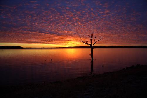 フリー画像|自然風景|湖の風景|夕日/夕焼け/夕暮れ|樹木の風景|アメリカ風景|フリー素材|