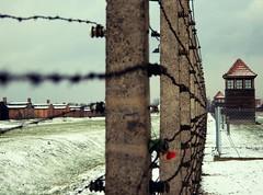 Auschwitz (Sandra_R) Tags: snow history canon poland barbedwire auschwitz birkenau concentrationcamp
