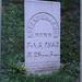 Robert Harmon Headstone Ellen Whites Brother