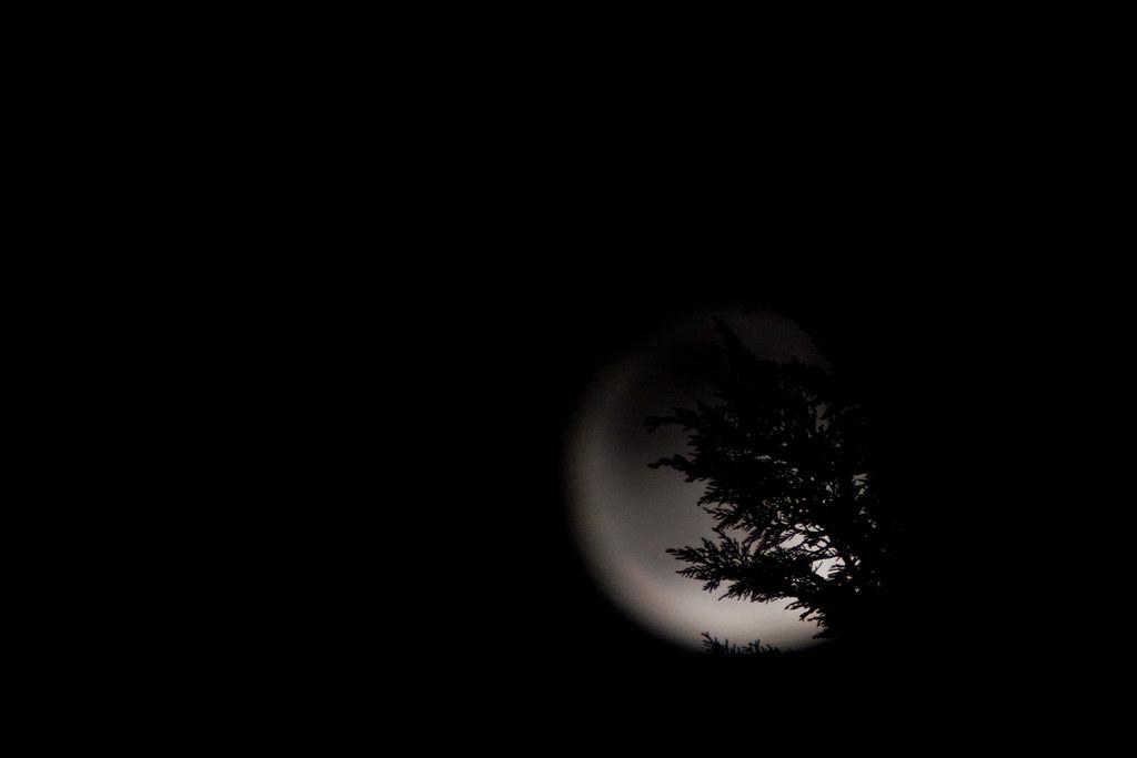 Full Moon - setting up