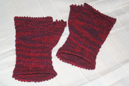 Fingerless Lace Mitts
