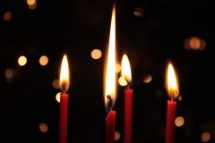fuoco (slaker) Tags: christmas xmas winter white snow neve inverno natale bianco freddo regalo brrrrr ghiaccio regali