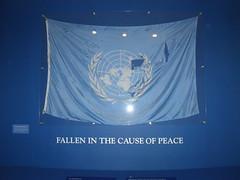 UN Flag (fabriziogiordano23) Tags: travel usa holiday newyork geotagged peace flag tagged un pace geo viaggi vacanze onu statiuniti