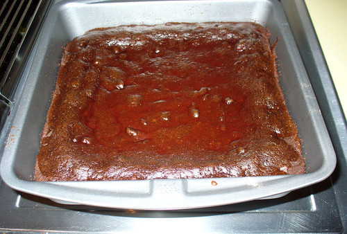 2008-12-24 - Brownies - 0007