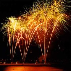 Feliz Ano Novo 2009!!!