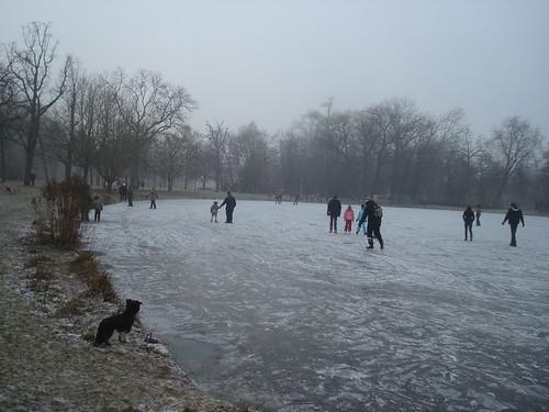 Vorst - Vondelpark