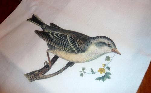 Bird floursack tea towel at Gourmet Shop.