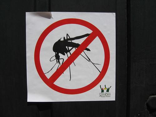 no dengue here, aka_lusi, CC