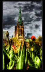 St. James Church (The Oracle) Tags: roses fab toronto church photoshop dark unique render fineart gothic digitalart surreal fantasy soe hdr stjameschurch darkphotography digitalphotography fineartphotography fantasyart artcafe blueribbonwinner 3dphotography digitalphotographer surrealphotography fantasyimages torontophotographer hdrphotography proccessing fineartphotos uniquestyle darkphotos gothicphotography digitalartist darkstyle citybuild colorphotoaward fantasyhdr fantasyphotography theunforgettablepictures surrealhdr uniquephotography torontochurches surrealimages vosplusbellesphotos surrealphotos gothicphotos atomicaward daarklands tanquilphotography gothichdr