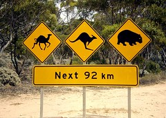 Beware! Beware! Beware! (tm-tm) Tags: sign warning australia signage southaustralia oceania yellowwarningsign animalwarningsign