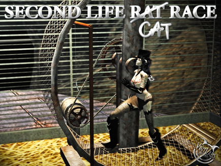 Rat... euh Cat Race Second Life (private)