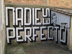 patio (nadie en campaña) Tags: streetart graffiti stencil politica perfección nadie