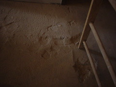 Dean Hall Construction - 3rd floor, 60 year old foot prints