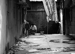 working alone (jobarracuda) Tags: china chinese fz50 dongguan houjie panasoniclumixdmcfz50 jobarracuda jobar