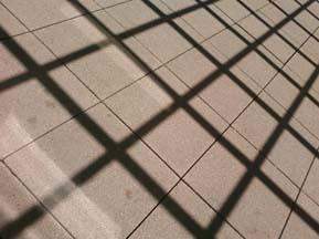 Grid_by_Sheila_Cunningham