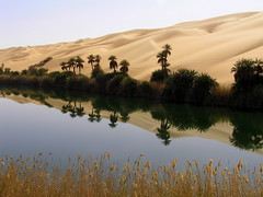A magic reflection on Ubari Lakes (lorytravelforever) Tags: africa reflection desert palm libya erg ubari worldglobalaward globalworldawards lesamisdupetitprince