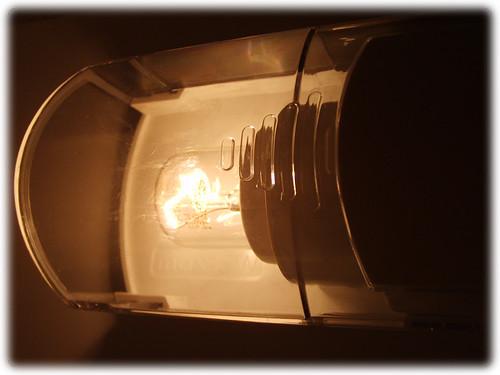 Lamp in fridge - open door