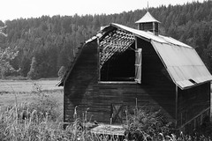 Painted Barn Grey