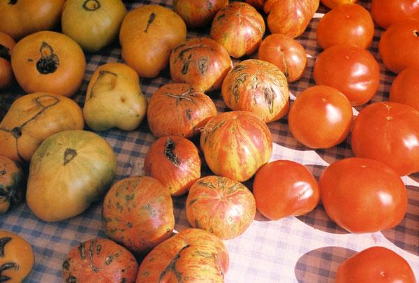 market: heirlom tomatoes