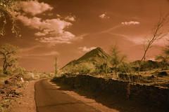 Road To Ruddy Mountain No.2 (aeschylus18917) Tags: road red sky india mountain tree nature clouds rural fence landscape ir nikon scenery d70 nikond70 farm surreal farmland infrared agriculture infra 1870mm rajasthan hilltribes scky  1870f3545g  nikkor1870f3545g danielruyle aeschylus18917 danruyle druyle   1870mmf3545gifdx nikkor1870f3545gdx