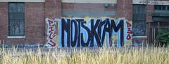 nots kram 7-06 2 (joenots) Tags: chicago graffiti tits graf pigs d30 nots kram
