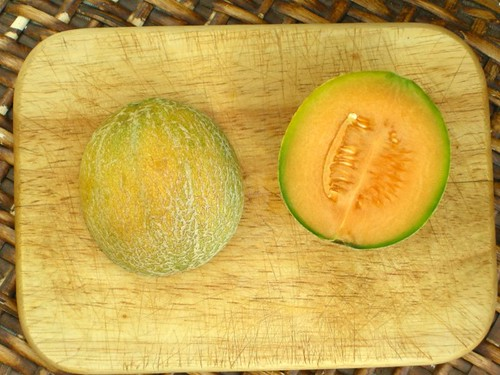 melon1824