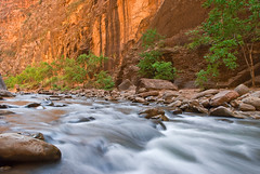 Deep Orange (Phijomo) Tags: southwest nature water river landscape outdoors utah nikon scenic canyon zion zionnationalpark bec canyons virginriver rushingwater thenarrows coloradoplateau canyoncountry d80 nikond80