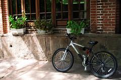 (anis k) Tags: bicycle iran ایران bazar tabriz بازار تبريز بازارفرش آذربایجانشرقی azarbaijaneastern upcoming:event=911302 bazarefarsh
