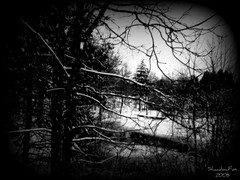 Winter On The Old Mill Pond Black And White (ShaadowFox/..making a comeback???) Tags: winter arva dragondaggerphoto canadaontariocameraphonelake