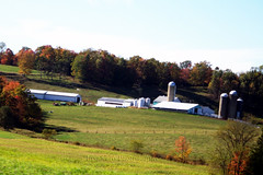 A Farm in Canaan Valley! (Lisa Ann Photography) Tags: trip autumn trees nature fam canaanvalley lisa5776