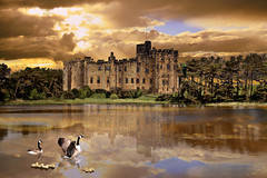 The Fairy Tale Castle in Explore (DDA / Deljen Digital Art) Tags: uk trees england sky cloud lake colour reflection castle art nature forest photoshop geese fishing ducklings created northumberland creation fantasy fantasia imagination chicks layers rays photographicart sunrays pleasure canadagoose imaginative layered imaginatory