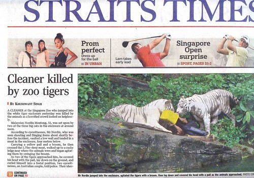 Tigers kill Singapore zoo cleaner