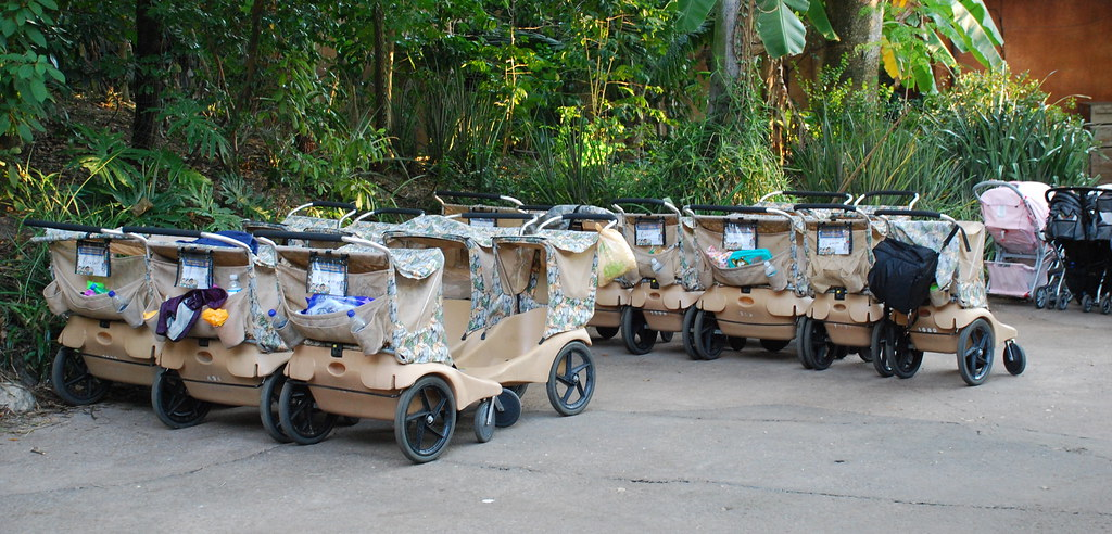 The Absurd Cost of Stroller Rentals photo