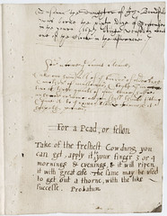 [Manuscript in several hands including leaves from a common-place book; genealogical notes and nostrums]