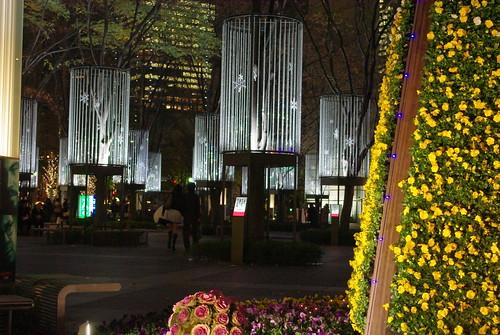 Flower Fantasia 2008-09