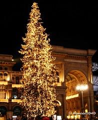 Merry Christmas Duomo In The Night (Pedro-Almeida) Tags: christmas bon italy night weihnachten navidad milano duomo merry feliz nol merrychristmas natale lombardia almeida nadal joyeux feliznavidad buon frohe buonnatale 2040 barona vnoce froheweihnachten joyeuxnol hyv bonnadal hyvjoulua wesoych wesoychwit joulua wit veselvnoce vesel   almeida2040  duomointhenight