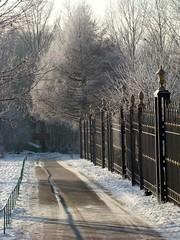 Tsaritsyno park lane (katunchik) Tags: winter white snow frost hoarfrost moscow sony frosting h9 москва зима снег blueribbonwinner bej иней impressedbeauty изморозь