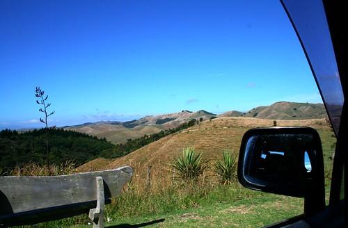Waiheke roadtrip